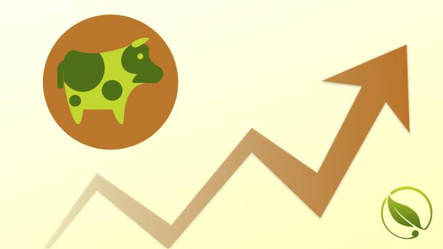 Cene stoke i stočne hrane za period 20-24.9.2019.