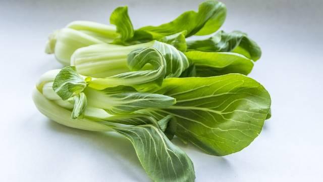 Pak čoi – egzotična salata koju možete gajiti u svom vrtu