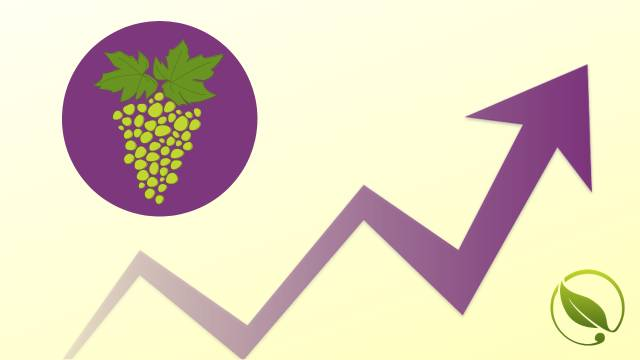 Cene voća za period 31.10-04.11.2019.