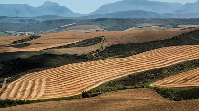 Uskoro novi sistem identifikacije zemljišnih parcela