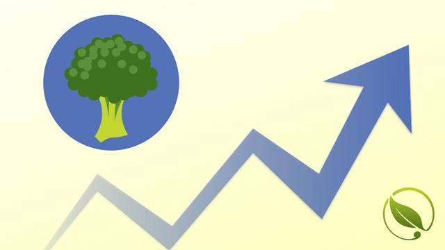 Kelj pupčar PRVI PUT ove sezone| Cene povrća