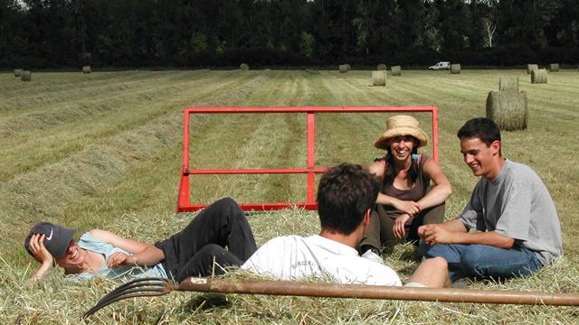 Mladim poljoprivrednicima prednost pri dodeli podsticajnih sredstava