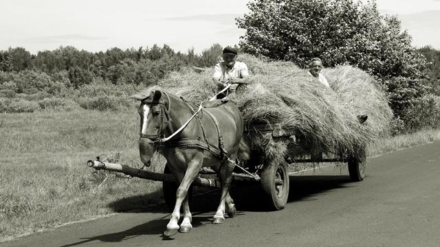 Civilizacija ili poljoprivreda - šta je starije?