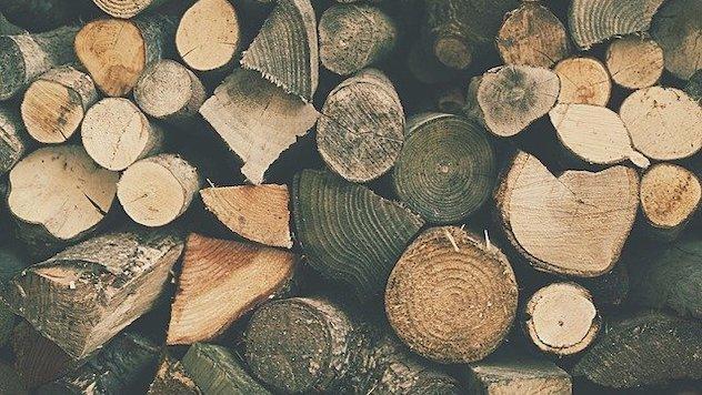 Da li imamo potencijala za proizvodnju biomase? - Podelite svoj stav