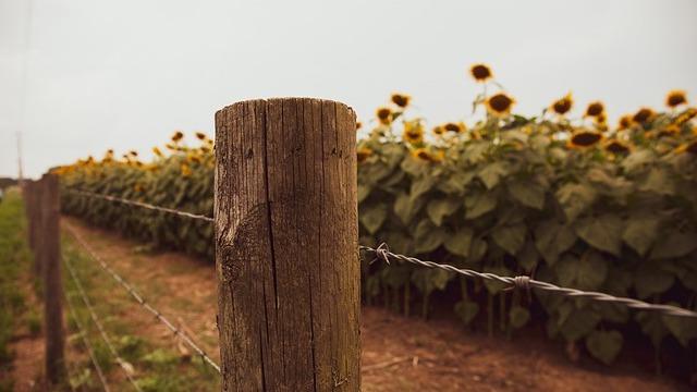 Blizu 300 poljoprivrednika se prijavilo za prelazak do svojih njiva u BiH