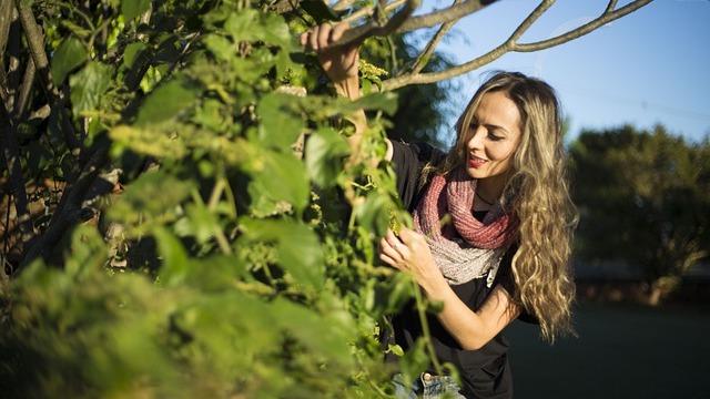 Baštovanstvo za početnike - 10 pravila za uspešno gajenje biljaka
