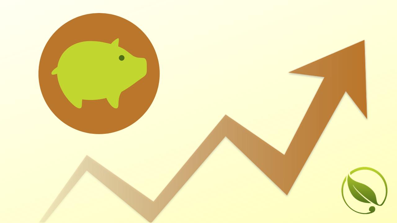 Cene tovnih svinja i krmača za klanje u padu | Cene stoke