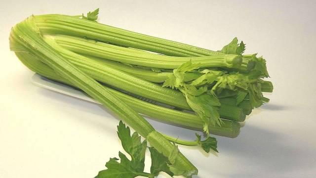Kako se gaji celer?