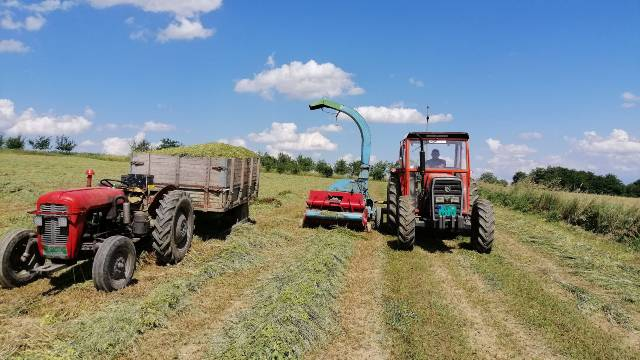 Koje su prednosti sopstvene proizvodnje stočne hrane?