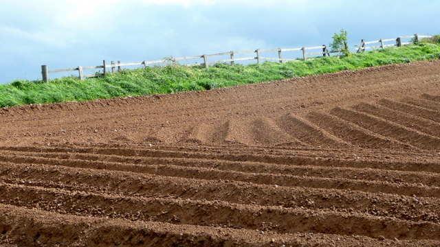 Solarizacija: Dezinfekcija zemljišta na prirodan način