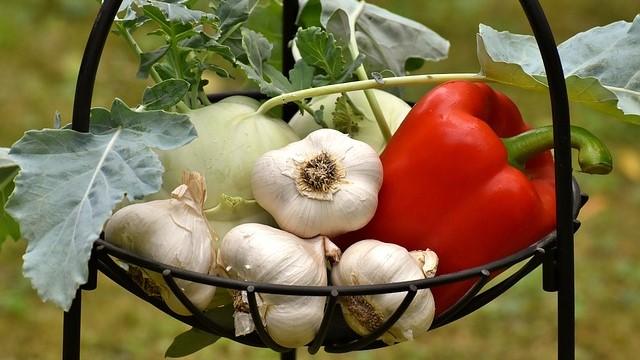 Kako da sačuvate sveže povrće iz bašte i do 10 meseci
