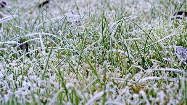 Travnjak se i zimi mora negovati - ©Pixabay