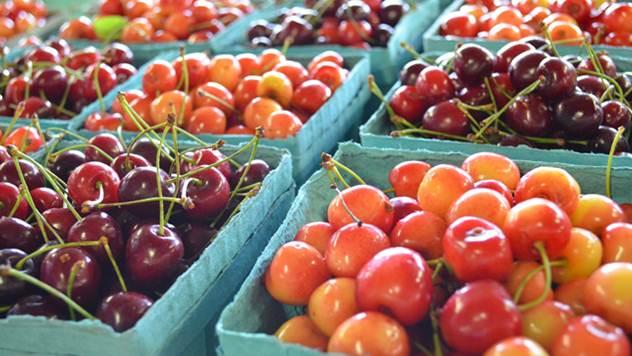 Čuvanje plodova trešnje nakon berbe - © Pixabay