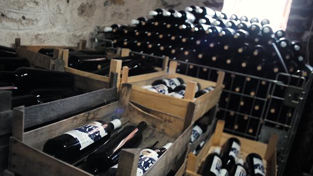 Vinski podrum © Agromedia