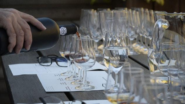 Degustacija vina © Pixabay