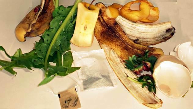 Hranljivo organsko đubrivo za biljke uz pomoć ovih pet otpadaka iz kuhinje © Pixabay