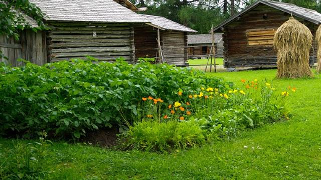 Zaštite povrće kreiranjem mikroklime u bašti - © Pixabay