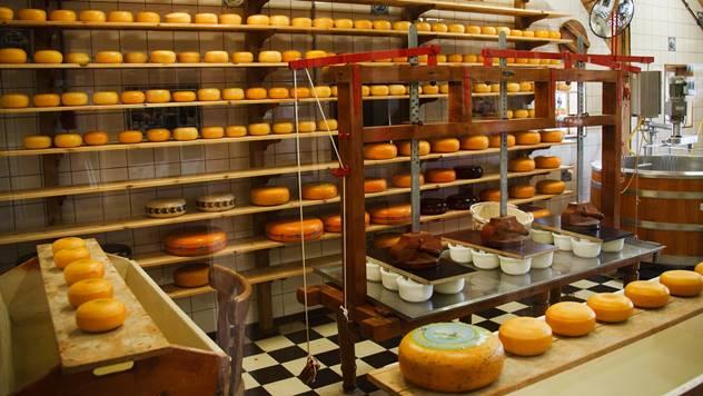 dozrevanje sira