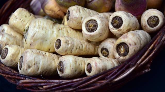 Saveti za uzgoj: Tajna savršenog PAŠKANATA-©Pixabay