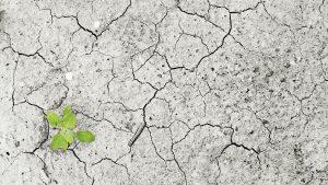 Degradacija zemljišta