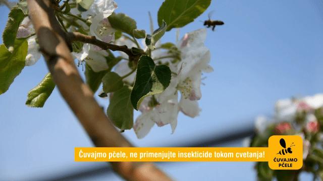 Čuvajmo pčele