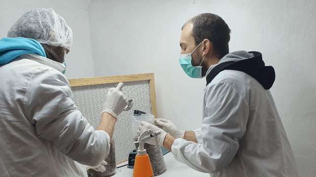 Rad u laboratoriji - Aleksandar Simeunović i Predrag Đorđević