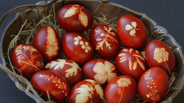 Jaja u lukovini