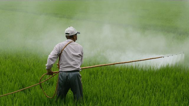 Prskanje pesticida