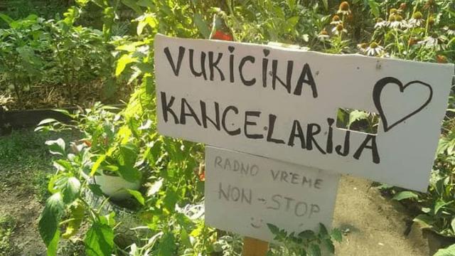 Vukicin azil za biljke