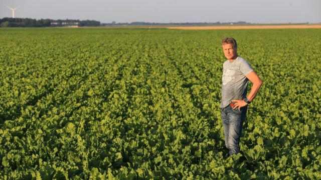 Poljoprivrednik u polju
