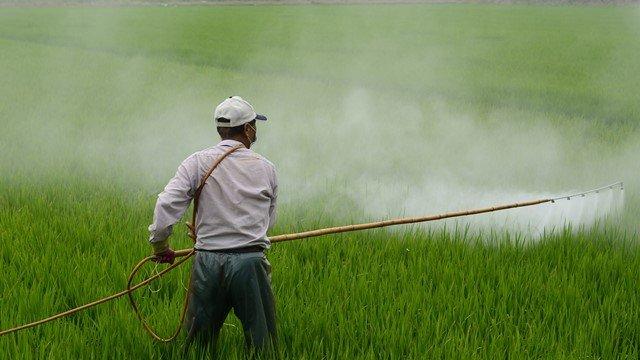 Zaštita bilja herbicidima - © Pixabay