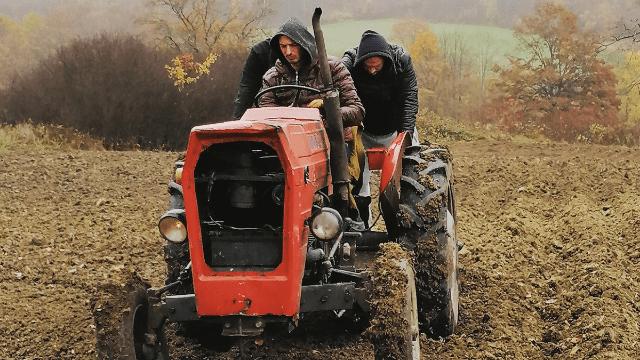 Aleksa i Andrija na traktoru