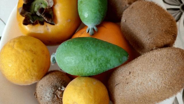 Kiwi, kaki, sibirski limun i feđoja
